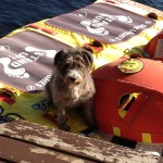 Look! I'm on a raft!